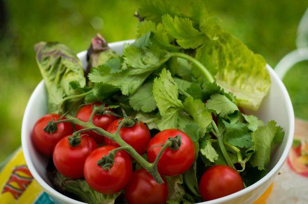 Wrap Salat