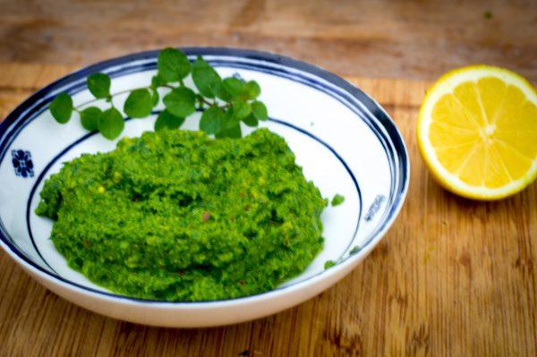 Oliven Salsa