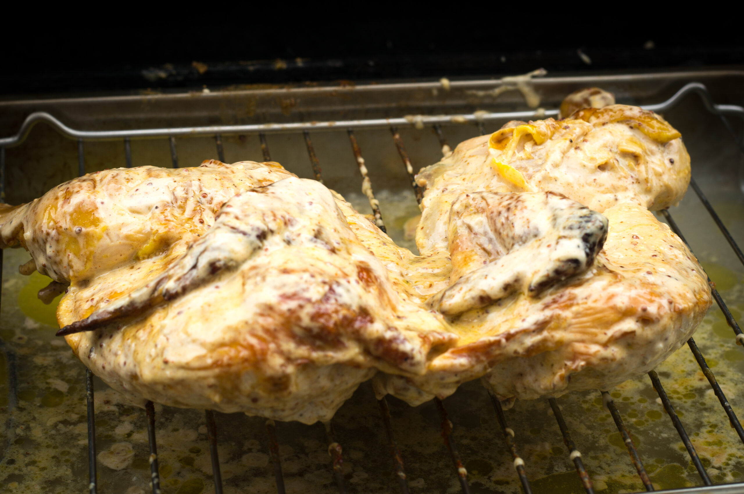 Roadkill Chicken - Alabama White BBQ Sauce