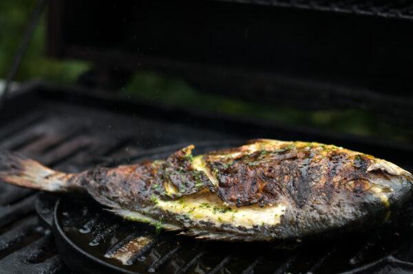 ganzer Fisch auf der Plancha grillen